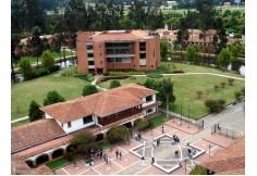 Foto Universidad de La Sabana - Pregrado Colombia Exterior